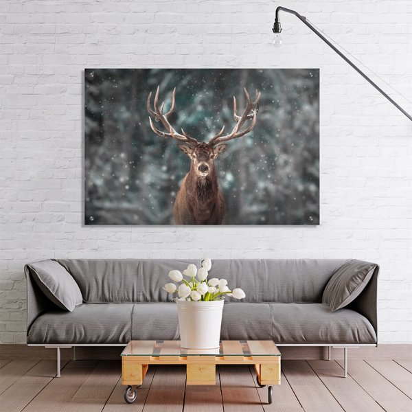 Print på akryl - Motiv Reinsdyr